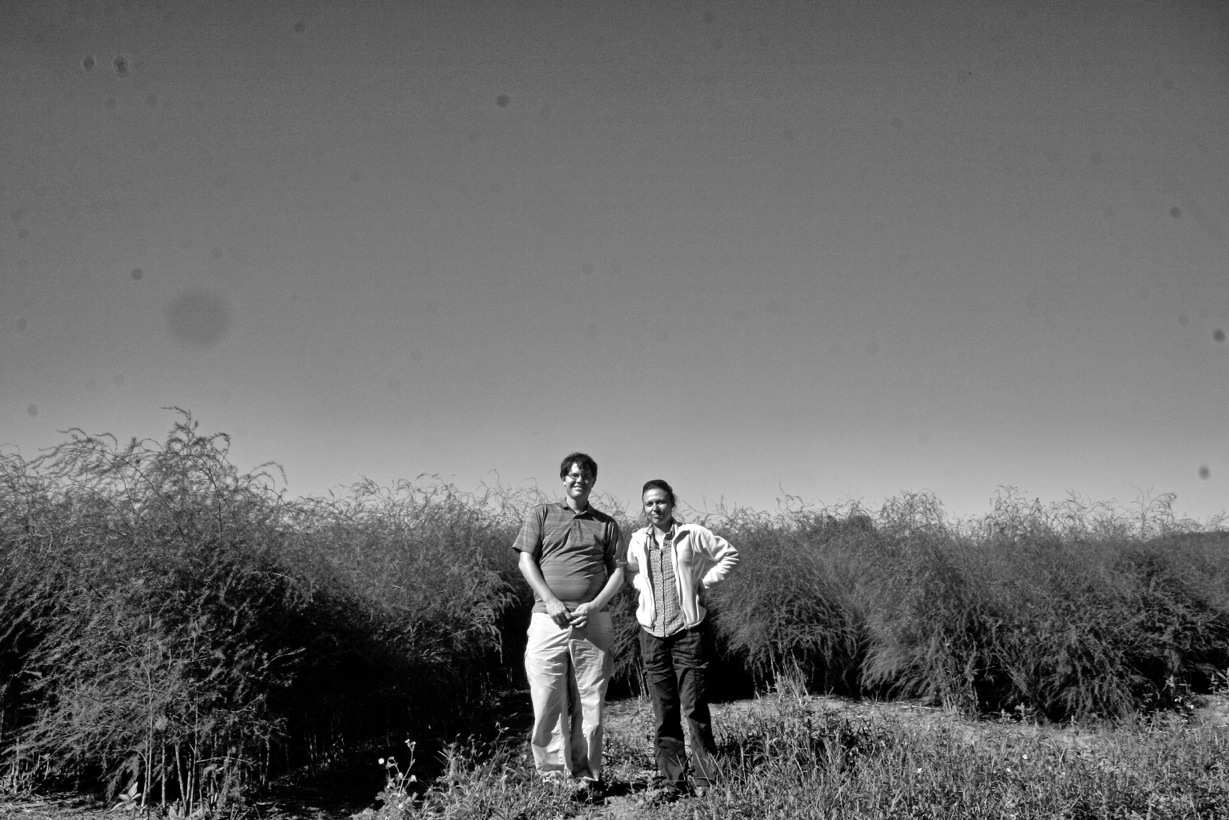 Rob and Zsofia on the last day of asparagus sampling, Sep. 2013.